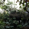 Another view at Dallas World Aquarium